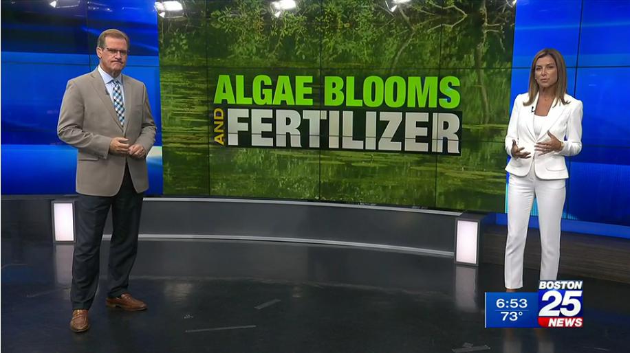 Boston 25: Efforts underway to limit fertilizer use, curb dangerous algae blooms in lakes & ponds